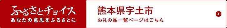 熊本県宇土市の自治体情報 ふるさと納税「ふるさとチョイス」リンク画像