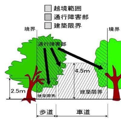 建築限界参考図の画像